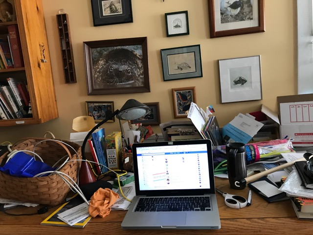 Deb Bruss Workspace